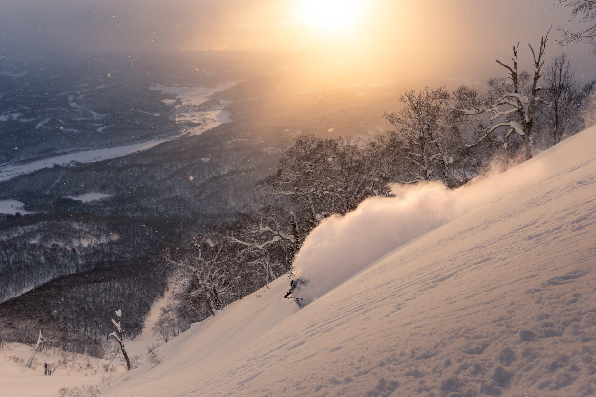 Joshua Sellens x Niseko Zen - Mountain Sports and Lifestyle. 2020